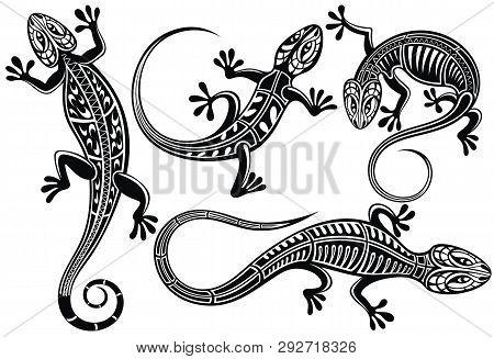 Set Of Lizard, Salamader, Gecko Sillhouette  For Your Design