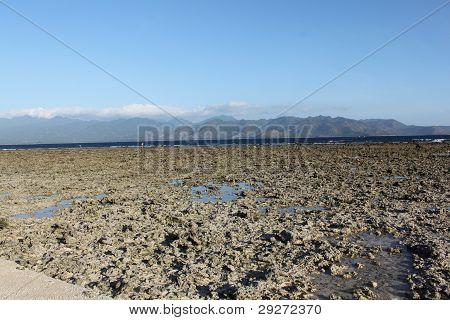 ocean after ebb