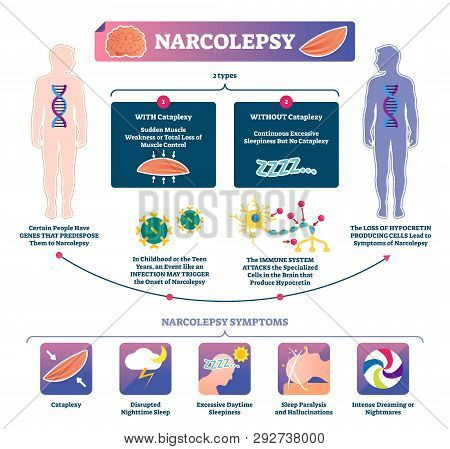 Narcolepsy Vector Illustration. Labeled Muscle Strength Disease Infographic. Medical Sleep Loss Expl