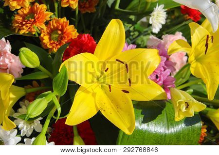 Floral Centerpiece With Lilium Floral Centerpiece With Carnation Spring In Red