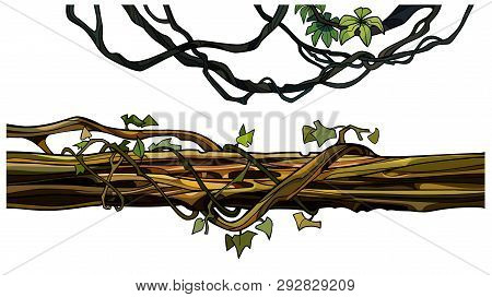 Cartoon Creeper Twigs And Log Entwined With Ivy