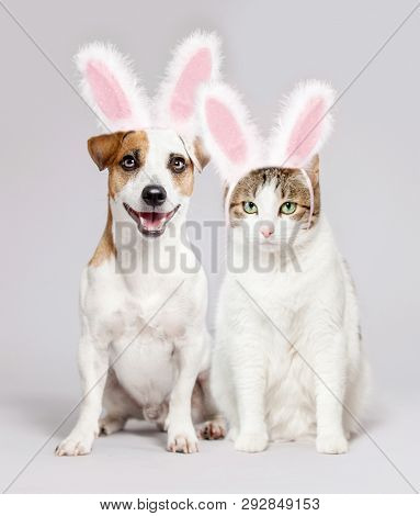 Cat and dog wearing Easter bunny ears peeking out