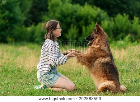 Pretty Brunette Woman Playing With German Shepherd Dog On The Grass In Park. Dog Sitting Give A Paw