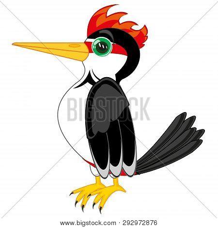 Vector Illustration Of The Bird Woodpecker Cartoon