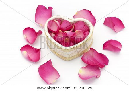Heart Cup And Rose Petals