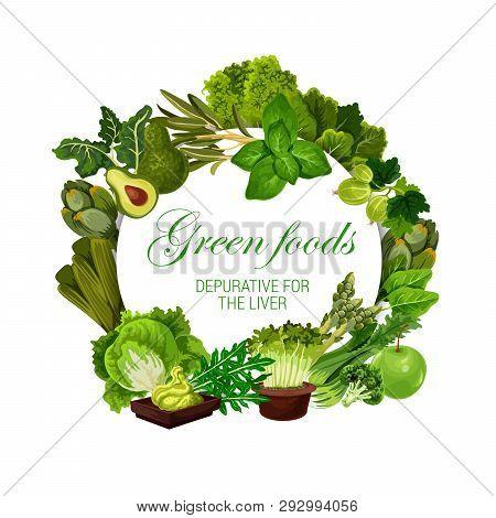 Green Food Nutrition, Color Diet Healthy Vegan Salads, Vegetables And Berries. Vector Natural Organi