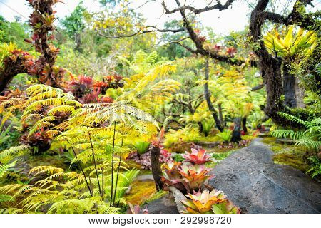 Natural Garden Style Decoration Like Heaven.