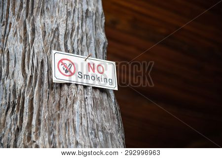 No Smoking Label Stick To The Pole In The Public Park.
