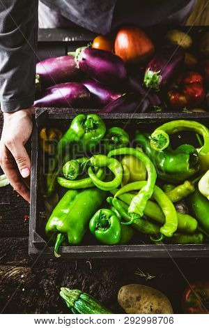 Organic Gardening. Farmers Hands With Green Peppers.  Spring Gardening
