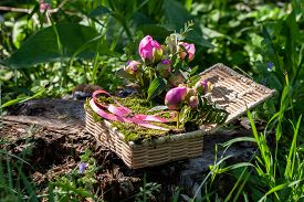 Wicker Box For Wedding Rings With Beautiful Flowers And Natural Moss