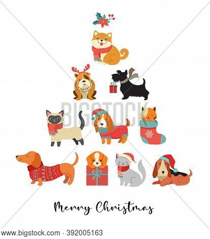 Collection Of Christmas Cats And Dogs, Merry Christmas Illustrations Of Cute Pets With Accessories L