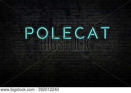 Neon Sign On Brick Wall At Night. Inscription Polecat
