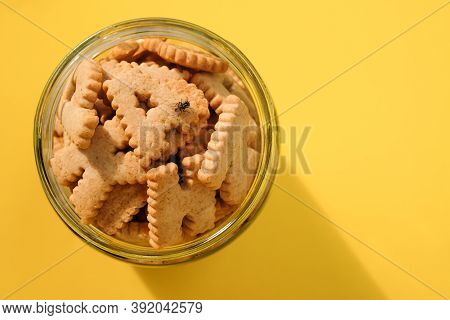Housefly Eating A Biscuits, Insect Come On Food Can Lead To Food And Waterborne Diseases, Flies Are