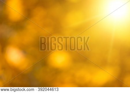 Autumnal Natural Bokeh Background Or Backdrop, Fall Autumn Season Graphic Object
