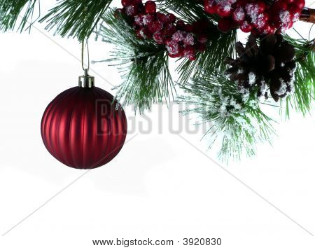 Tree Branch With Ornament