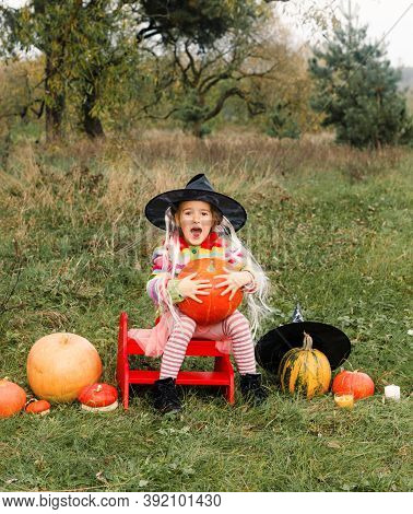 A Girl In A Big Hat Is Sitting On A Chair And Holding A Big Pumpkin In Her Hands Around A Lot Of Big