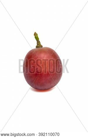Red Grapes Isolated On White Background Used As A Card Background In Various Events Related To Food
