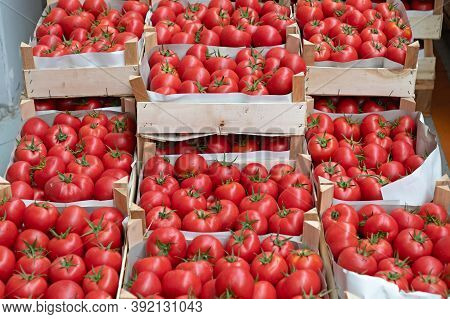 Crates Of Red Tomatoes At Farmers Market