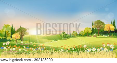 Spring Landscape Morning In Countryside With Sun Rays Shining Through Green Meadow On Hill With Oran