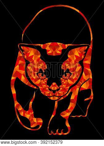 Mosaic Of Sneaking Cat Bright Orange And Red Hues Isolated On The Black Background, Decoration Of Th