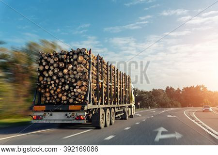 Long Heavy Industrial Wood Carrier Cargo Vessel Truck Trailer With Big Timber Pine, Spruce, Cedar Dr