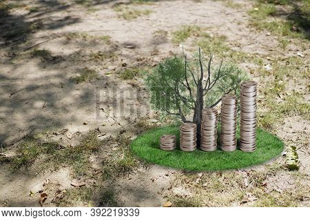 Plant Growing In Savings Coins On Grass Zone. Money Saving Growing Business Finance - Investment And
