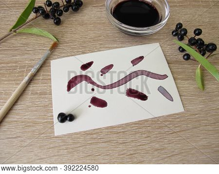 Painting With Black Violet Plant Ink Made From Privet Berries