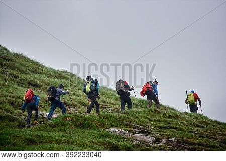 Male Travelers With Backpacks Walking On Grassy Hill. Group Of Active People With Trekking Sticks Cl