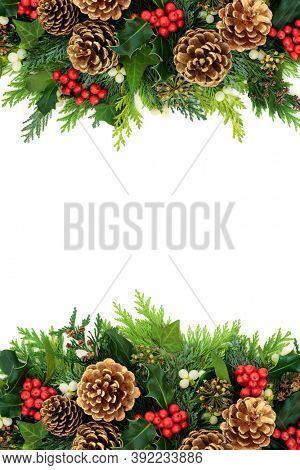 Christmas background border with gold pine cones, holly, mistletoe, ivy & cedar cypress fir on white. Xmas & New Year decorative arrangement. Flat lay, top view, copy space.