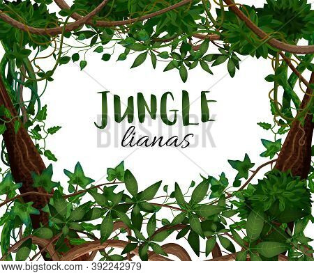 Tropical Twining Lianas Realistic Frame With Hedera Ivy Climbing Vine Exotic Plants Leaves Decorativ