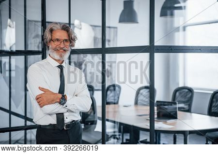 Confident Mature Businessman With Grey Hair And Beard In Formal Clothes Is In The Office.