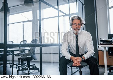 Portrait Of Mature Businessman With Grey Hair And Beard In Formal Clothes That Sitting In The Office