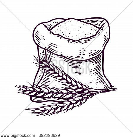 Hand Drawn Sack With Whole Flour Or Sugar With Ear Wheat. Isolated On White Background. Sketch Style