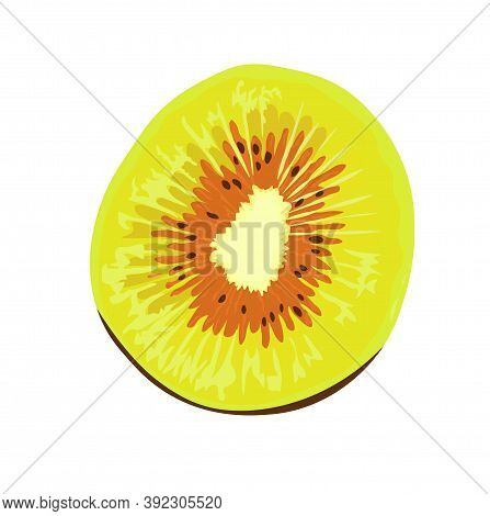 Kiwi Red Vector Stock Close-up Illustration. Green Kiwi Hybrid. Exotic Fruit, Tropical Delicacy. Iso
