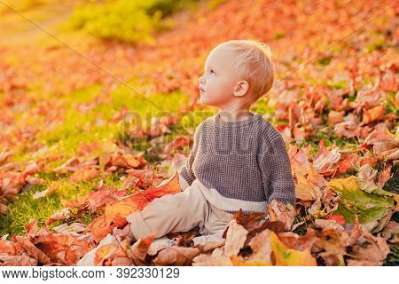 Cute Little Girl Sitting On The Covered Leaves Of The Earth Watching The Leaves Fall. Happy Childhoo