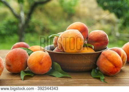 Ripe And Tasty And Juicy Peaches Lie On A Plate On A Wooden Table In The Garden. Fresh Sweet Peaches