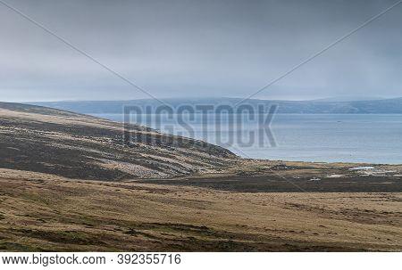 Stanley, Falkland Islands, Uk - December 15, 2008: Windswept Green And Dry Grassland Descending To B