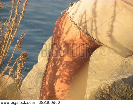 Dry Plant Shadow On A Man`s Leg Makes The The Plant Shape Visible. The Man Is Wearing Khaki Pants. T
