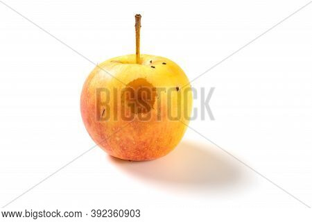 A Small Rotten Apple Bited By Insect On A White Background