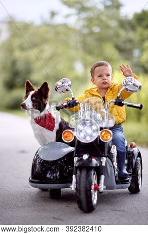 Happy little boy driving a toy motorcycle with his dog in a park