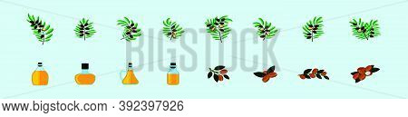 Set Of Argan Oil And Bottles Cartoon Icon Design Template With Various Models. Vector Illustration I