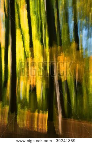 Abstract autumn forest image
