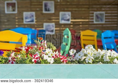 Wooden Pot With Flowers On The Background Of A Trendy Cafe Interior. Cafe With Empty Tables And Chai