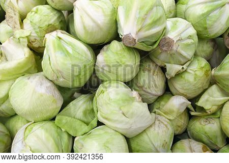 Cabbage From Field. Cabbage Background. Cabbage Harvest. Group Of Green Cabbages In A Supermarket. C