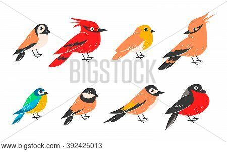 Winter Birds. Cartoon Wild Flying Animals Isolated On White Background, Collection Of Sparrow, Bullf