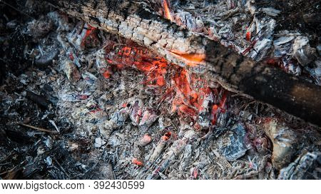 Embers In The Fire. Dry, Thin Branches Were Added To The Fire.