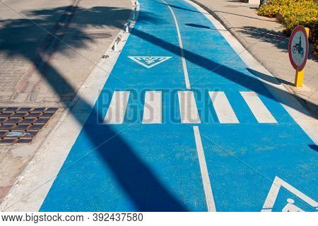Shade From Palm Trees On The Bike Path. Bicycle Path. Bike Path With Pedestrian Crossing Sign In The