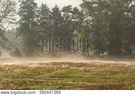 Autumn Mists Rising Over The Meadows In The Morning.\nvast Meadow. It Is Autumn, It Is Covered With
