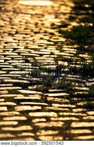 Stone pavement close-up with the sun glinting during sunset.