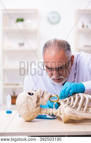 Old senior anthropologist working in the lab
